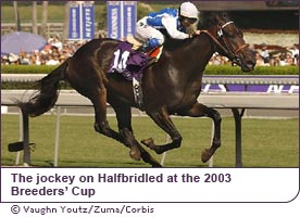 Julie Krone on Halfbridled at the 2003 Breeders Cup